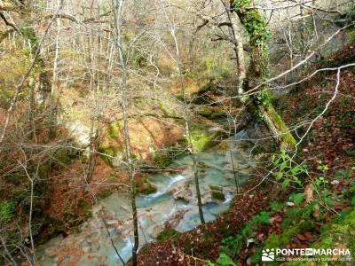 Parques Naturales Urbasa-Andía y Aralar - Nacedero del Urederra; viaje cultural españa
